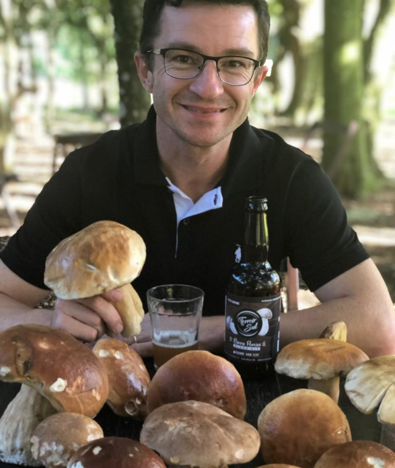 Caça aos Cogumelos - Terrori Sul - Marcelo Sulzbacher